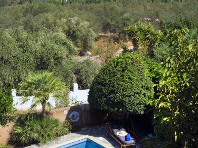 Bild Villa Olivo