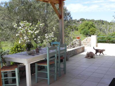 """Bild """"Olive Garden"""" Molivos"""