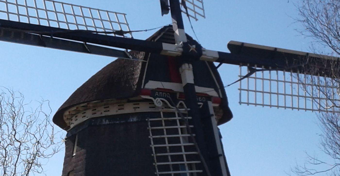 Ferienhaus Nordseeperle in Dirkshorn (Nordholland, nähe Alkmaar)