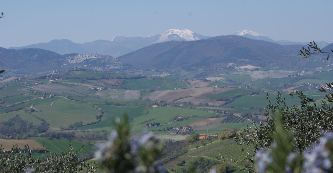 Poggio-delle-Querce - Eichenhügel Fewo