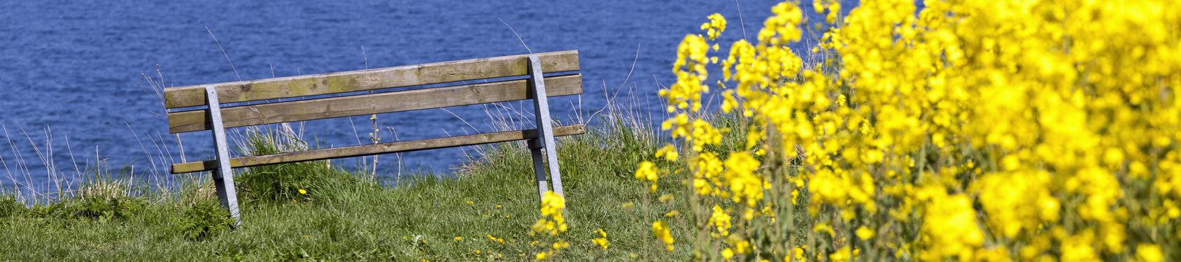 Bild von Schwedeneck