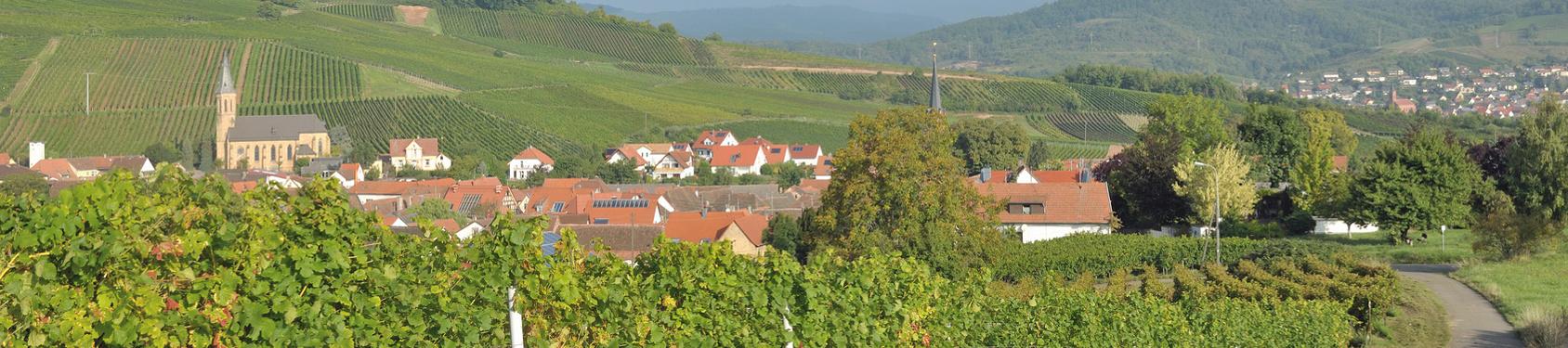 Bild von Birkweiler