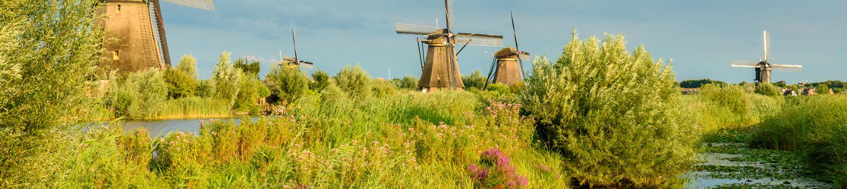 Bild von Zuid-Holland