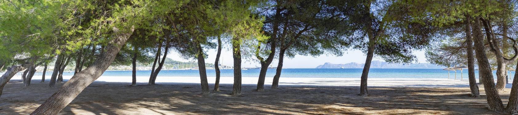 Bild von Alcúdia