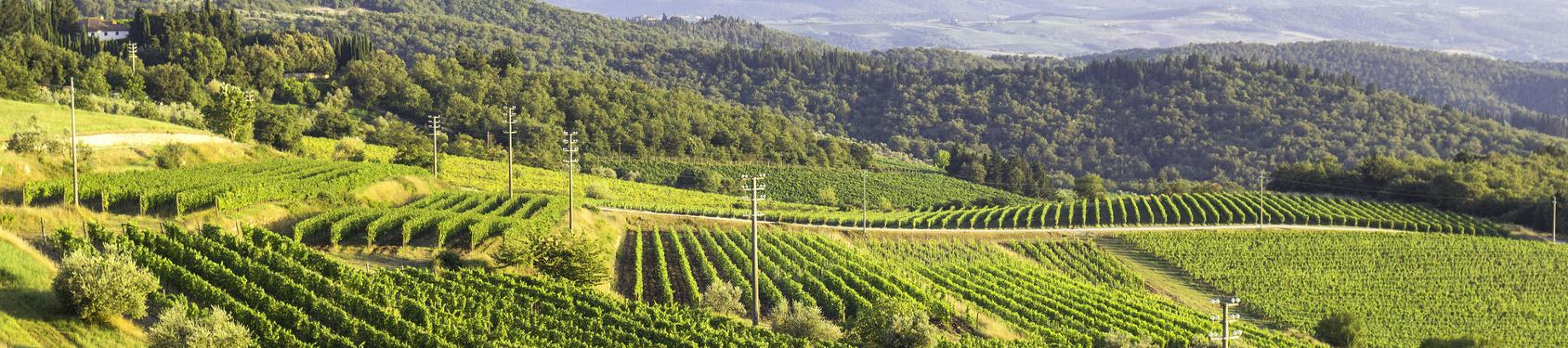 Bild von Provincia di Asti