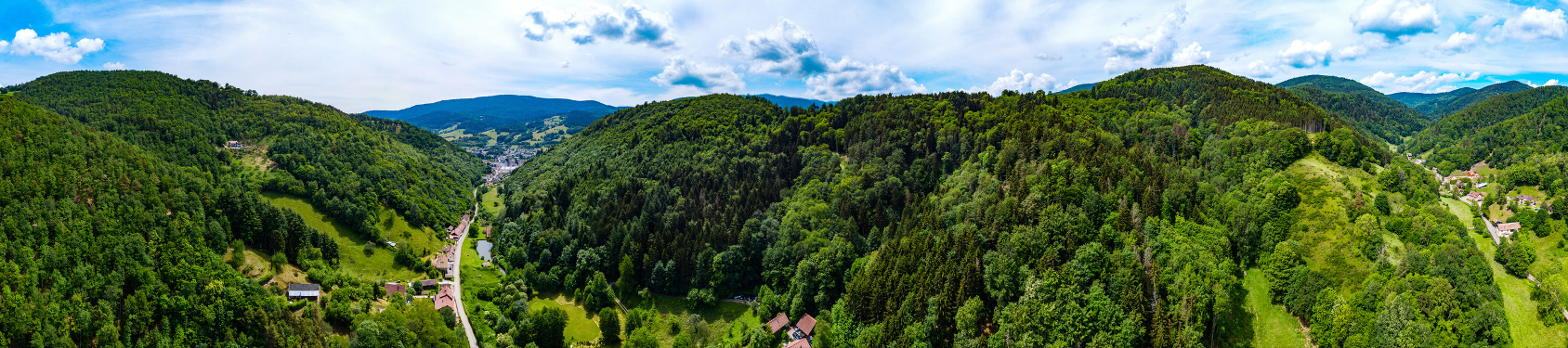 Bild von Vosges